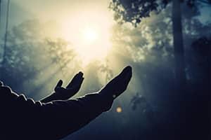 mains avec énergie reiki en forêt